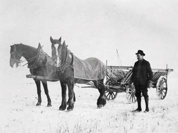 Seligweielr 1884