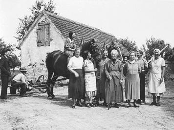 Seligweiler Hof 1924